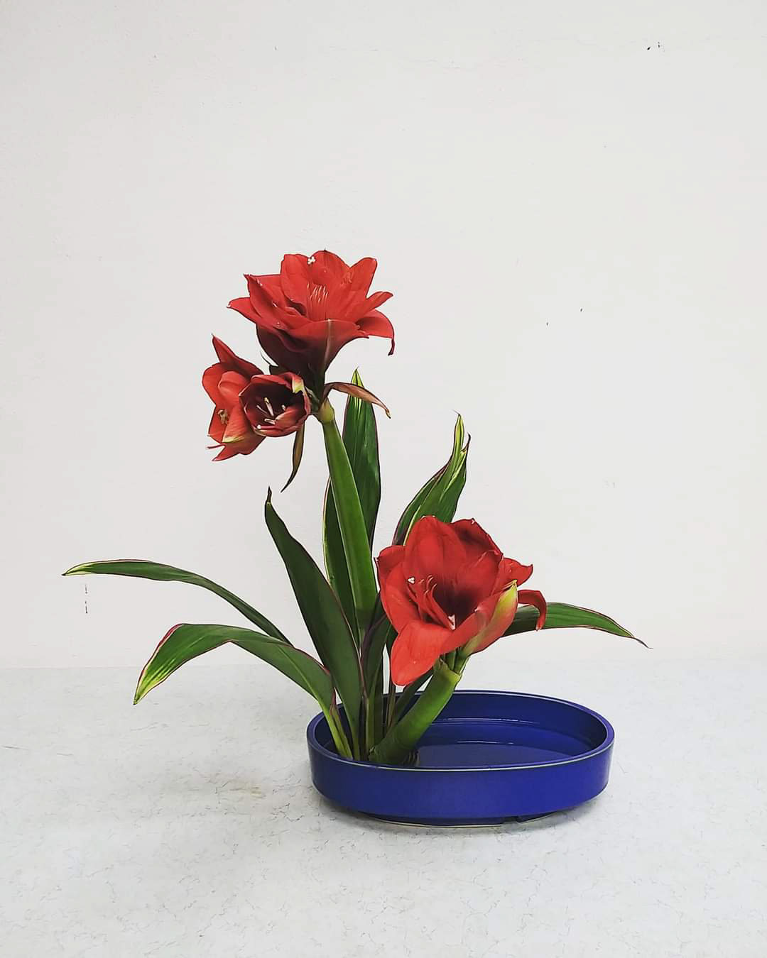 ohara-florist-japanese-ikebana-arrangement-course-6